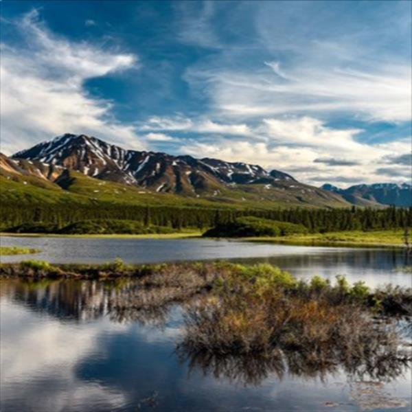 This photo was captured at the Denali Photography Workshop.